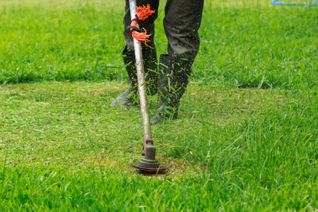 The gardener cutting grass by lawn mower Stock Photo