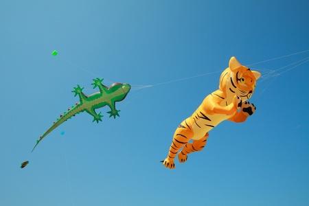 tiger kite flies at thailand Kite Festival Stock Photo - 10860611