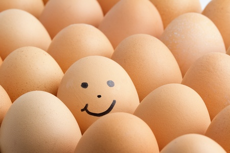 Eggs, smiling. photo