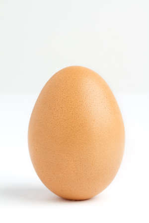 close up of egg on white background photo