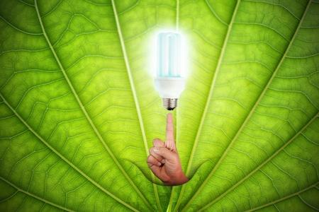 concept of saving energy Stock Photo - 12161017