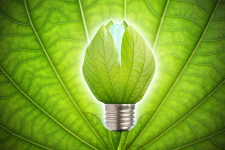 concept of saving energy photo