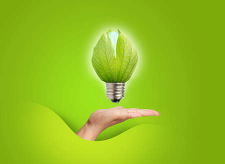 close up of a light bulb on hand Stock Photo - 12161038