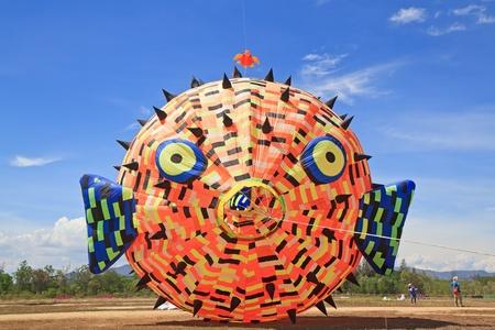puffer: Puffer kite