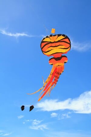 kite  on  blue sky photo
