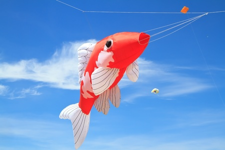Koi fish kite  on  blue sky photo