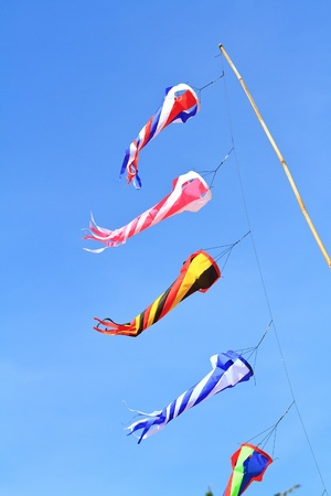 kite  on  blue sky photo