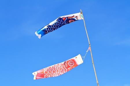 japan kite  on  blue sky photo