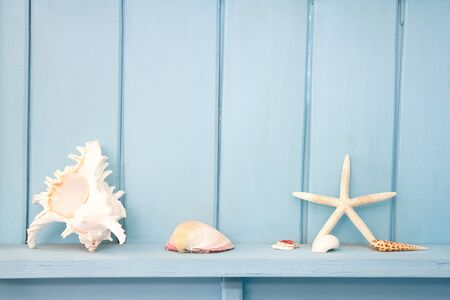 decoration with shellfish, beach style decoration Stock Photo