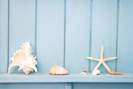 decoration with shellfish, beach style decoration Standard-Bild