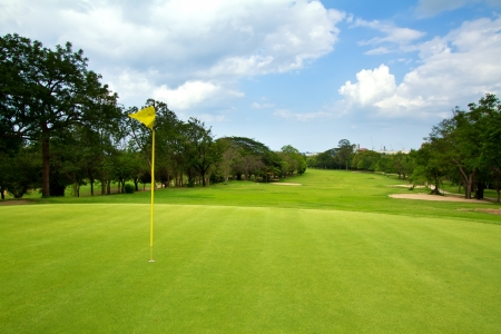 golf green: golf course