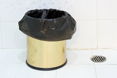 Trash Can In The Bathroom Photo