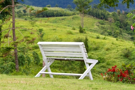 A wooden lawn chair  photo