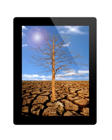 tablet pc with Dead trees  isolated on background white photo