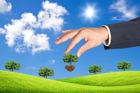 ble: scene of the hand plant tree on green grass and ble sky Stock Photo