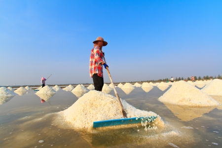 pan tropical: People working in the salt field Stock Photo