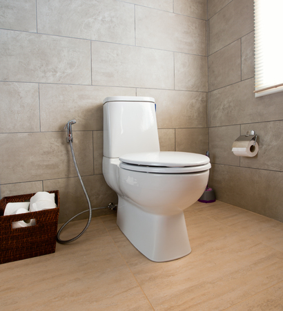 hemorrhoid: Home flush toilet (toilet bowl, paper)