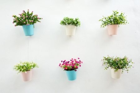 clay pot: Flower pot with white wall Stock Photo
