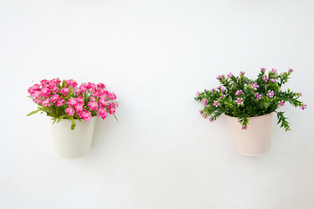 pot light: Flower pot with white wall Stock Photo