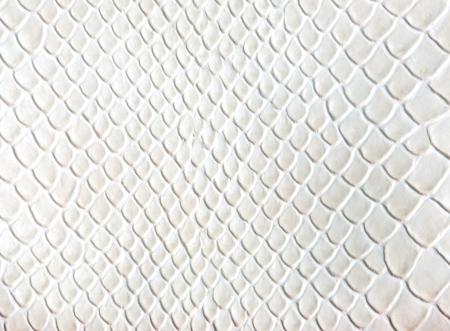 white leather texture ,snake skin texture