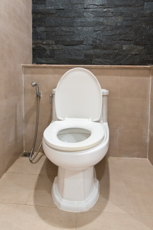 Home flush toilet  photo
