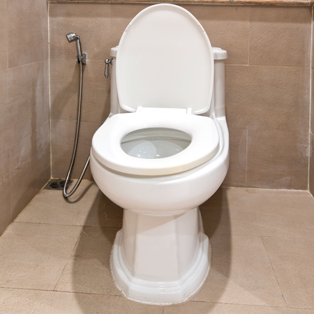 hemorrhoid: Home flush toilet  Stock Photo
