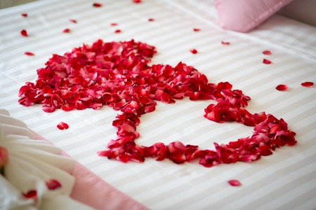 rose petals: Honeymoon, Wedding bed topped with rose petals
