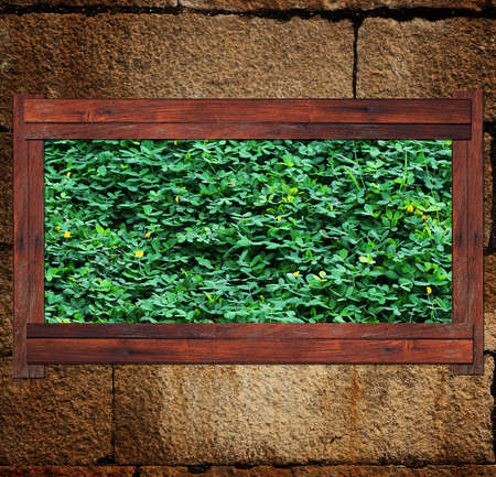 Wood Leaves stone background frame photo