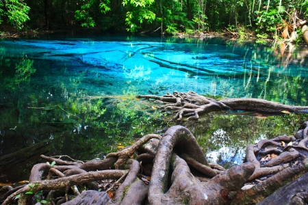 Blue water in the pool and in the forest at Thailand  Blue water in the pool  Stock Photo - 17591706