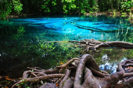 Blue water in the pool and in the forest at Thailand  Blue water in the pool Stock Photo - 17591709