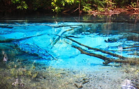 Blue water in the pool and in the forest at Thailand  Blue water in the pool Stock Photo - 17591684