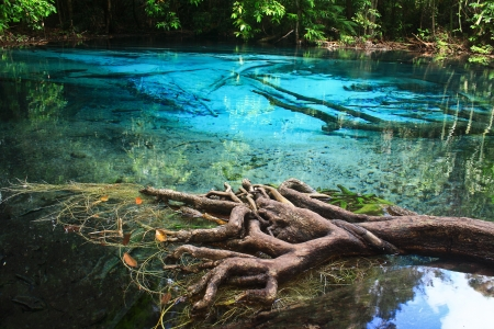 Blue water in the pool and in the forest at Thailand  Blue water in the pool Stock Photo - 17591677