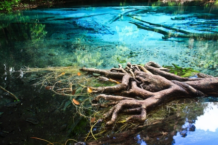 Blue water in the pool and in the forest at Thailand  Blue water in the pool Stock Photo - 17591696