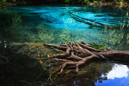 Blue water in the pool and in the forest at Thailand  Blue water in the pool Stock Photo - 17591664