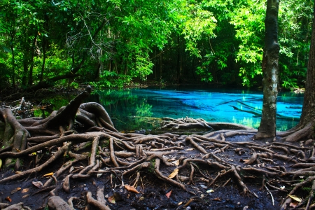 Blue water in the pool and in the forest at Thailand  Blue water in the pool  photo