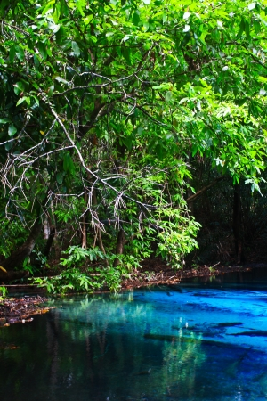 Blue water in the pool and in the forest at Thailand  Blue water in the pool Stock Photo - 17591678