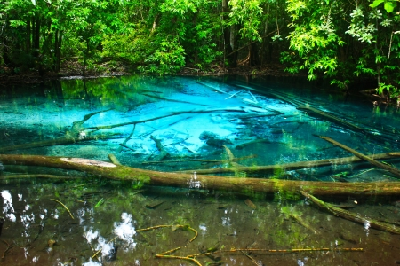 Blue water in the pool and in the forest at Thailand  Blue water in the pool Stock Photo - 17591679