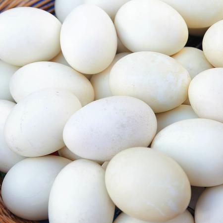 Duck eggs.