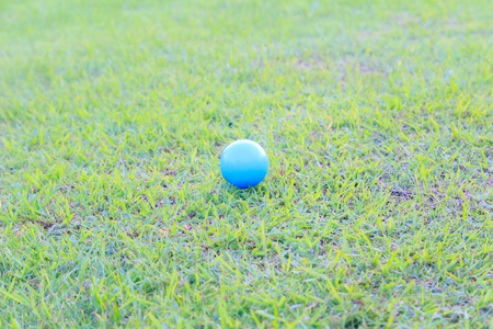 Plastic ball on the green lawn