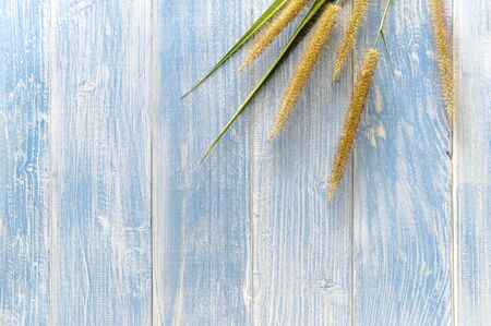 The grass flowers laid on a wooden floor have a blue wooden floor as background. Stockfoto