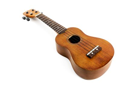 The brown ukulele on the white background,