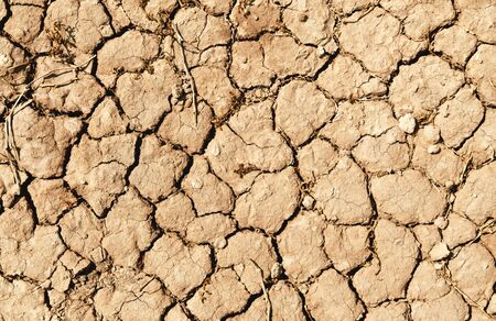 Closeup of dry soil texture ground for background Imagens