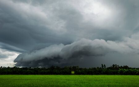 Black cloud Rainstorm is forming on green rice fields. Stock Photo