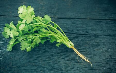 Selective focus / Fresh green coriander leaves on wooden table texture background. With blank copy space and add to text.