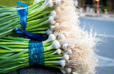 Fresh green garlic small harvested from farms sold at the market. Standard-Bild