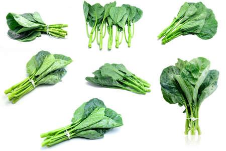 Thai style kale - Green kale isolated on white background.