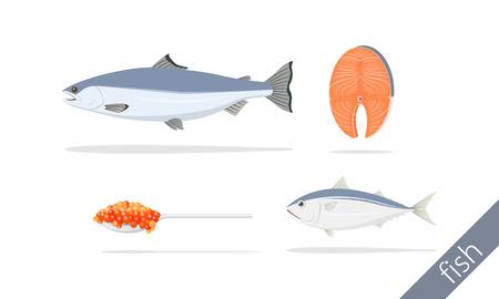 salmon fillet caviar and thai mackerel illustration Çizim