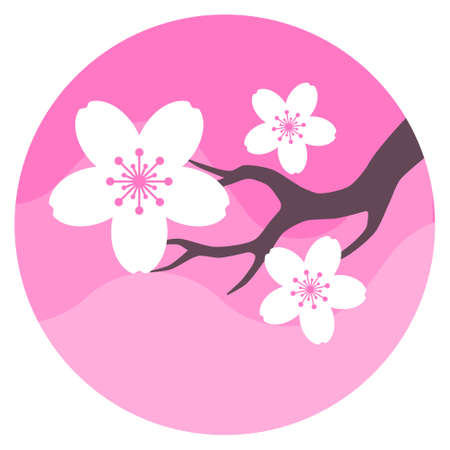 Beautiful sakura flower isolated vector illustration