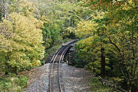 railway transportation: Old railroad tracks with autumn color around them.