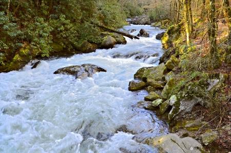 flowing river: El r�o de Tallulah en el norte de Georgia Foto de archivo